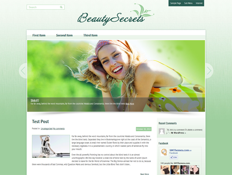 Wordpress Themes BeautySecrets