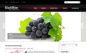 BlackWine Free WordPress Theme