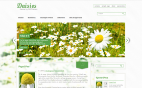 Daisies Free WordPress Theme