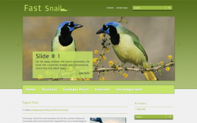 FastSnail Free WordPress Theme