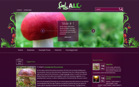 FindUsAll Free WordPress Theme