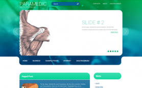 Paramedic Free WordPress Theme