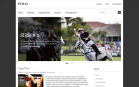 Polo Free WordPress Theme