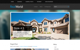 RealWorld Free WordPress Theme
