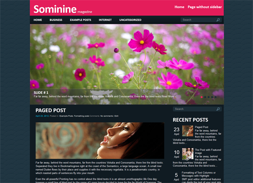 Sominine Free Wordpress Theme