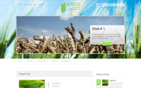 Wheat Free WordPress Theme