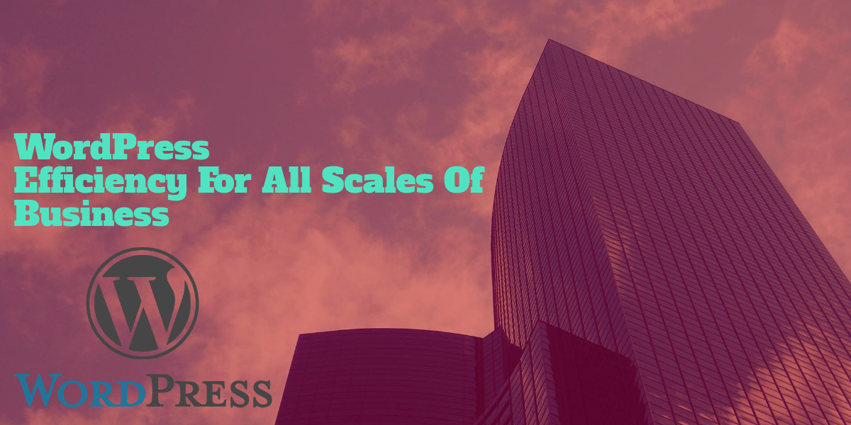 WordPress Efficiency for all Scales of Business