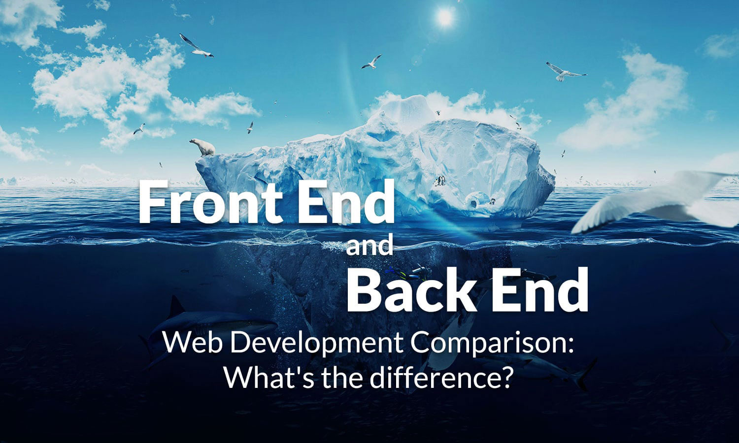 Front End versus Back End Web Design- What to Pick?