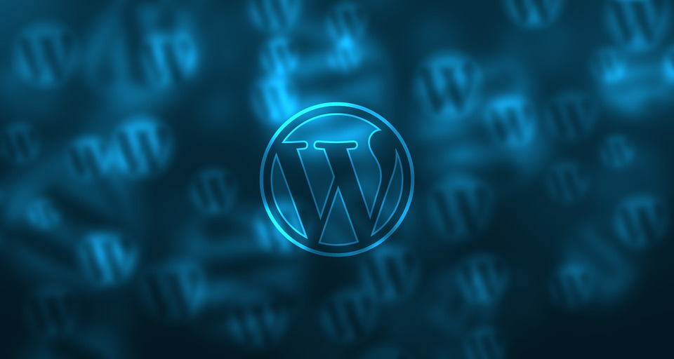 Ultimate Guide To Choosing The Best WordPress Maintenance Plan