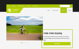AllSport Free WordPress Theme