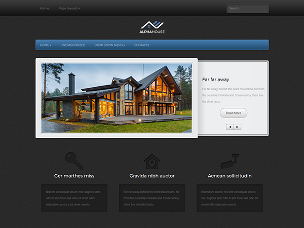 AlphaHouse Free WordPress Theme