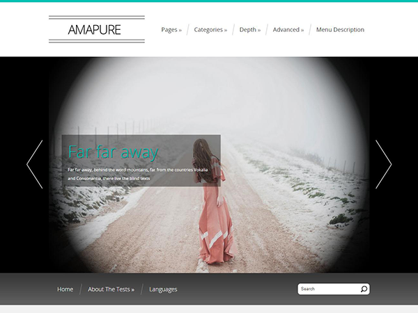 Amapure Free WordPress Theme