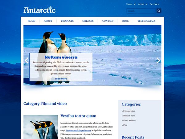 Antarctic Free WordPress Theme