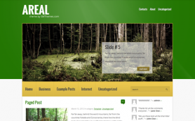 Areal Free WordPress Theme
