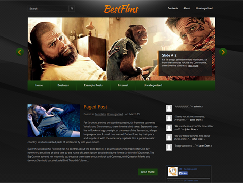 BestFilms WordPress Theme