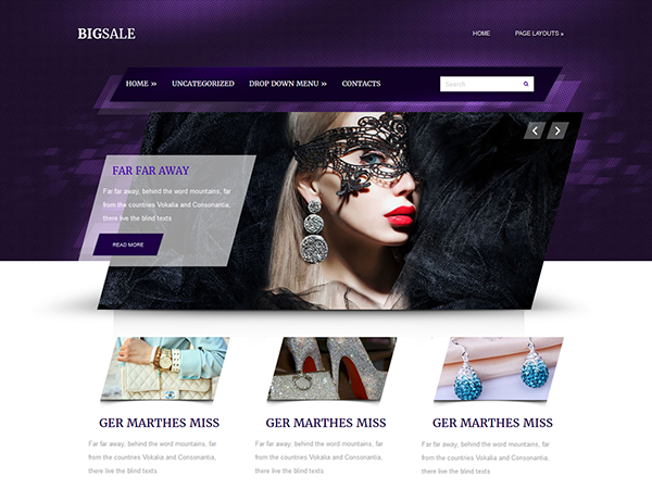 BigSale WordPress Theme