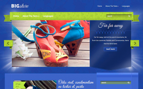 BigStore Free WordPress Theme