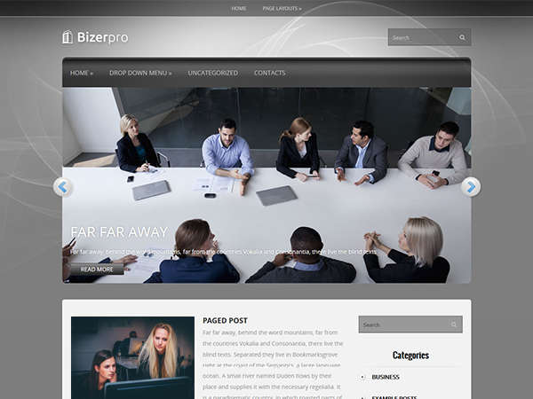 BizerPro Free WordPress Theme