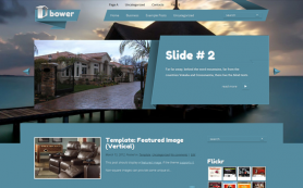 Bower Free WordPress Theme