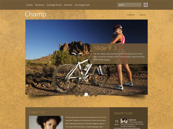 Champ Free WordPress Theme