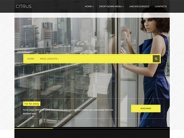 Citrus Free WordPress Theme