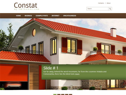 Constat WordPress Theme