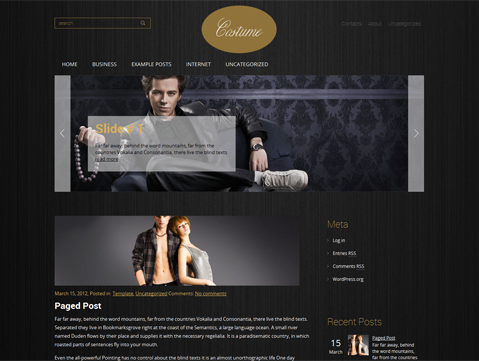 Costume WordPress Theme