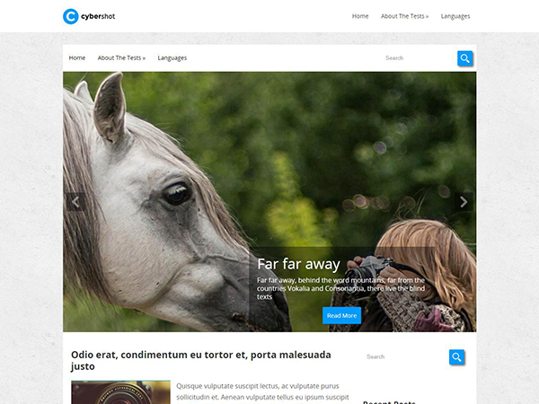 CyberShot Free WordPress Theme