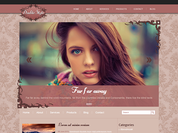 DoubleStyle Free WordPress Theme