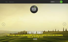 EcoNature Free WordPress Theme