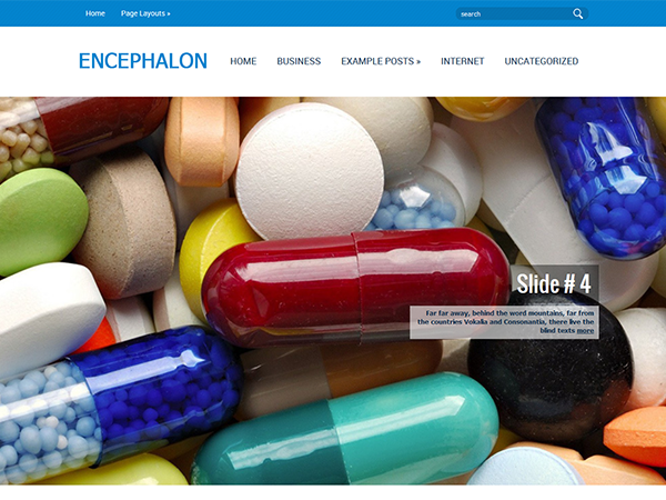 Encephalon Free WordPress Theme