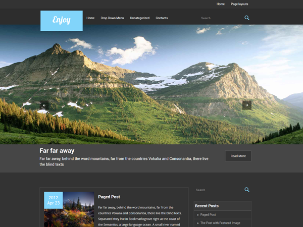 Enjoy Free WordPress Theme