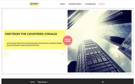 Estive Free WordPress Theme