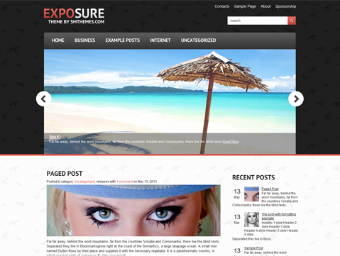 ExpoSure Free WordPress Theme