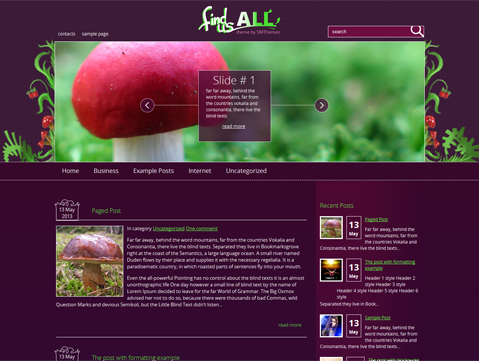 FindUsAll WordPress Theme