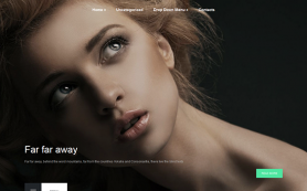 Footage Free WordPress Theme