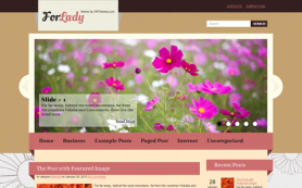 ForLady Free WordPress Theme