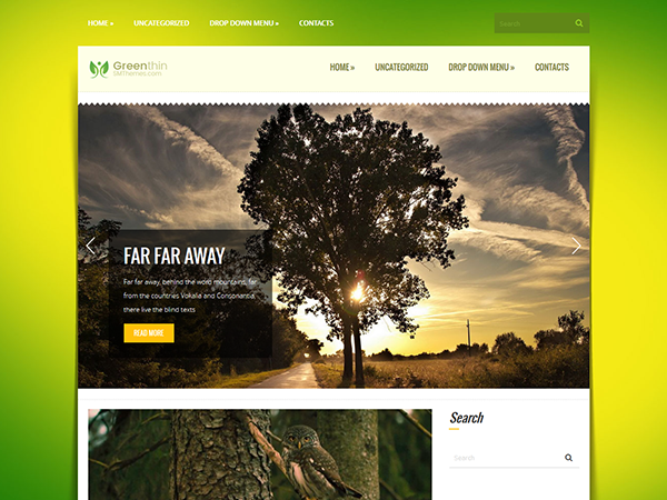 GreenThin Free WordPress Theme