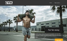 Gym Free WordPress Theme