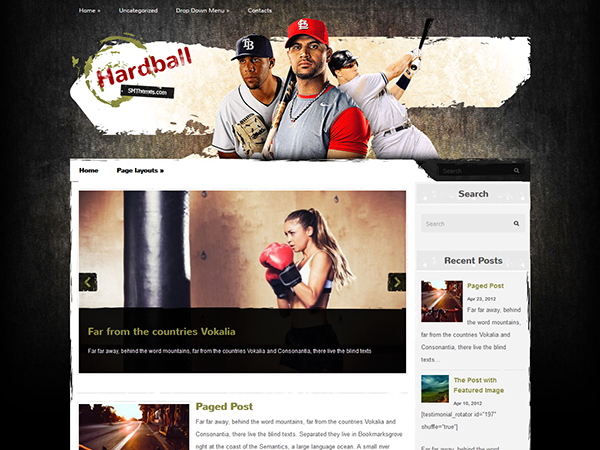 HardBall WordPress Theme
