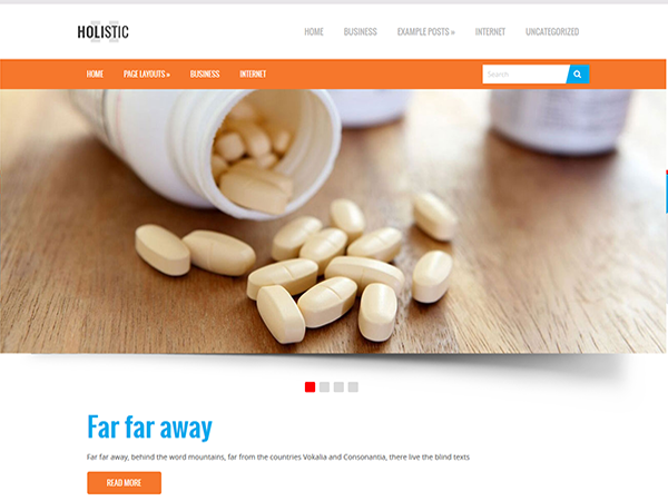 Holistic Free WordPress Theme