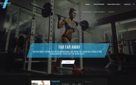 IceSport Free WordPress Theme