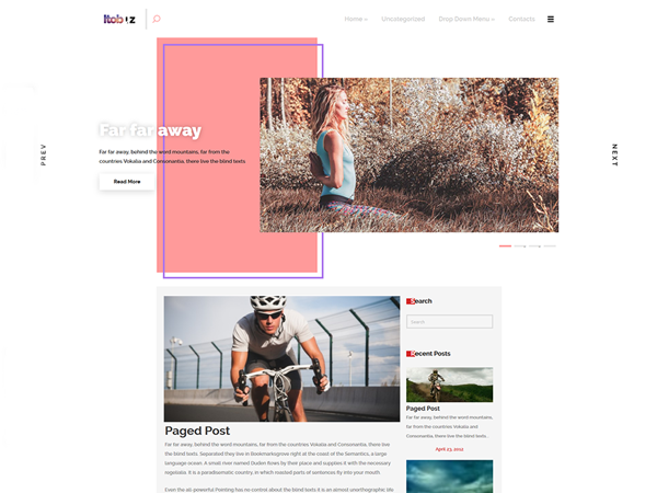 Itobuz WordPress Theme