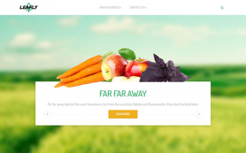 Leafly Free WordPress Theme