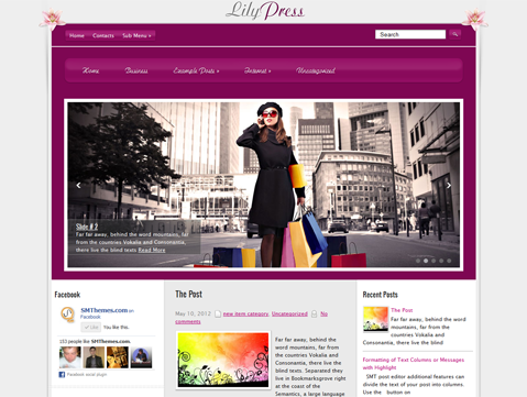 LilyPress Free WordPress Theme