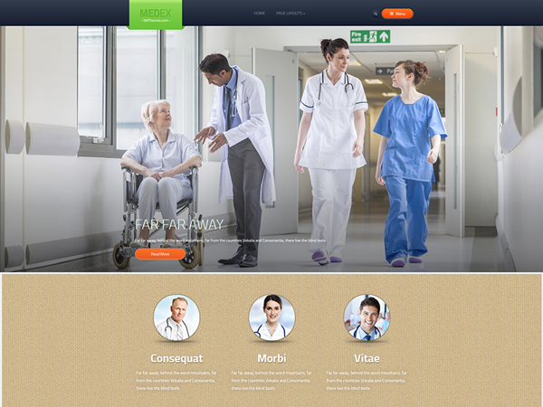 Medex WordPress Theme