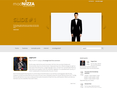 Modnizza WordPress Theme