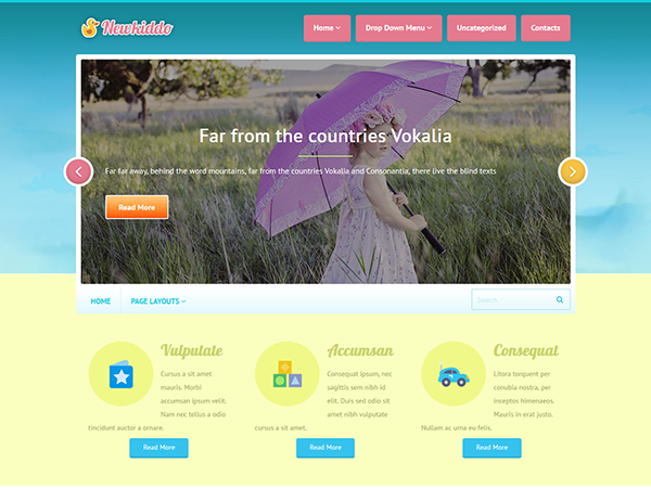 NewKiddo WordPress Theme