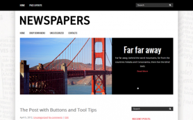 Newspapers Free WordPress Theme