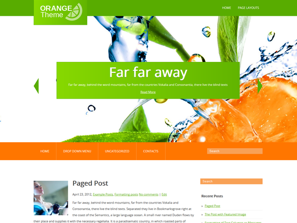 Orange WordPress Theme